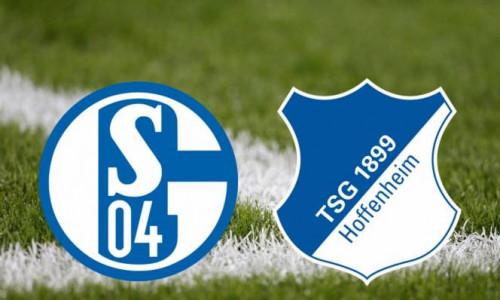 Link Sopcast, Acestream Schalke vs Hoffenheim, 01h30 ngày 21/4/2019