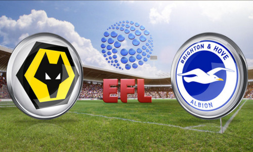 Kèo nhà cái Wolverhampton vs Brighton – Soi kèo bóng đá 21h00 ngày 20/4/2019