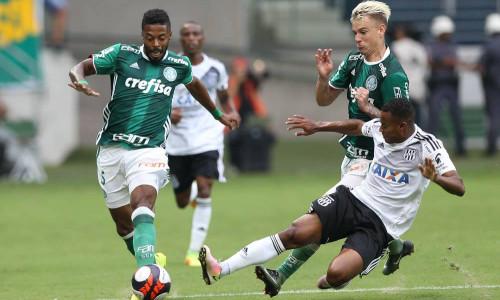Kèo nhà cái Botafogo vs Palmeiras – Soi kèo bóng đá 02h00 ngày 26/5/2019