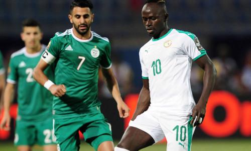 Link sopcast, acestream Senegal vs Algeria, 02h00 ngày 20/7: CAN Cup 2019