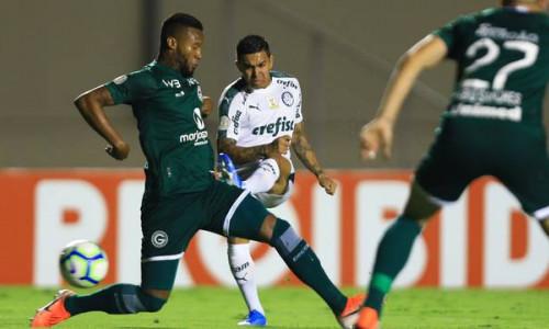 Soi kèo Palmeiras vs Goias vào 7h30 ngày 16/8/2020