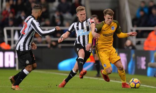 Soi kèo Newcastle vs Brighton & Hove Albion vào 20h ngày 20/9/2020