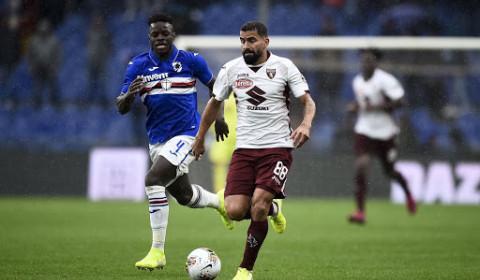 Kèo nhà cái, soi kèo Torino vs Sampdoria, 00h30 ngày 1/12 Serie A